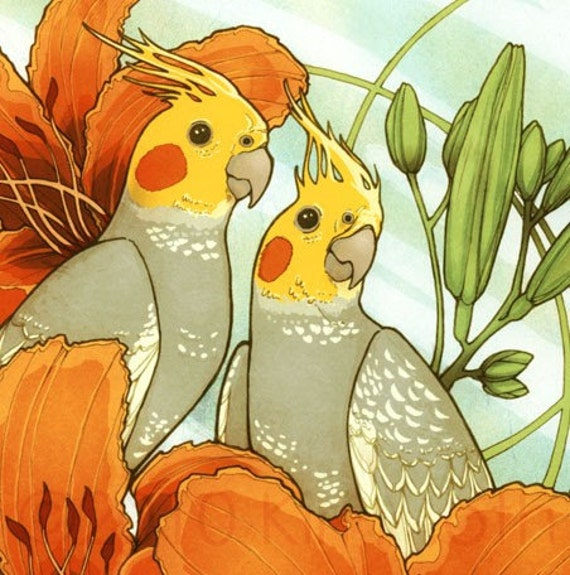 Pearl Cockatiels and Day Lilies - Art Print 8.5x11