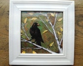 Framed picture giclee print of crow on birch tree - The Golden Hour