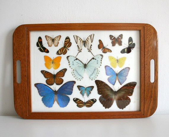 RESERVED FOR ANNA Pressed Butterfly Tray