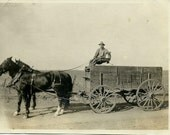 Photo - Farmer, Horses, Cart - Circa 1920s