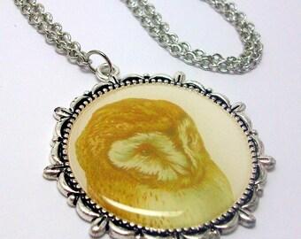 Regal Owl Necklace