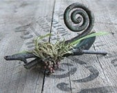 Feather & Fiddlehead Boutonniere - Custom