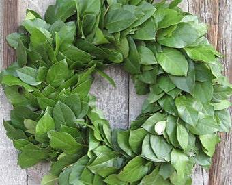 20 inch Lemon Leaf Wreath - Dried Flowers