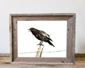 Japanese Ink Painting - Raven on a Barbed Wire Fence - Black Bird Sumi-e Art Print