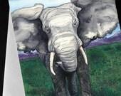 Elephant African Wildlife Watercolour Art Card