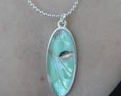 Luna Moth Wing Pendant Necklace