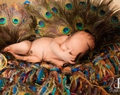 Peacock Fringe HAMMOCK and Baby Blanket Prop for Photo Portraits with Teal, Blue, Green, Turquoise, Gold, Brown, Purple