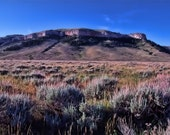 Pryor Mountains, Montana