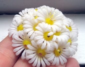 60s Plastic Yellow and White Daisy Delight Cluster Pin