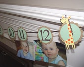 Babys first year photo tag banner,Giraffe/Jungle/Safari Theme - picture banner, 1st birthday,  first birthday, add your own photos