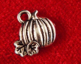 10 silver tiny pumpkin charms pendants striped gourd Halloween Thanksgiving fall fantasy fairytale 11mm x 11mm Free Combined Ship - C0362-10