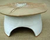 Deluxe Pine Toad House- Rustic Cream