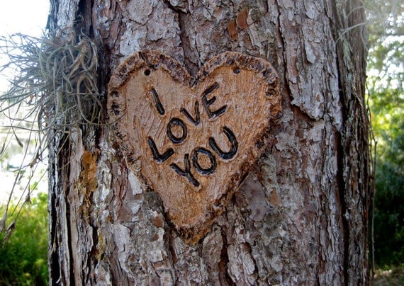 Heart with i love you carved into tree pottery