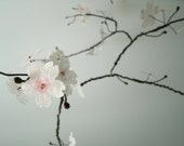 White Cherry Blossom Mobile Large with pink center