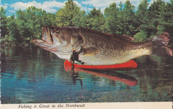 Vintage Postcard, Huge Fish in Red Canoe.  Color Photo, Kitsch Postcard, Postcard , Fishing is Great In the Northwest, Found Photo