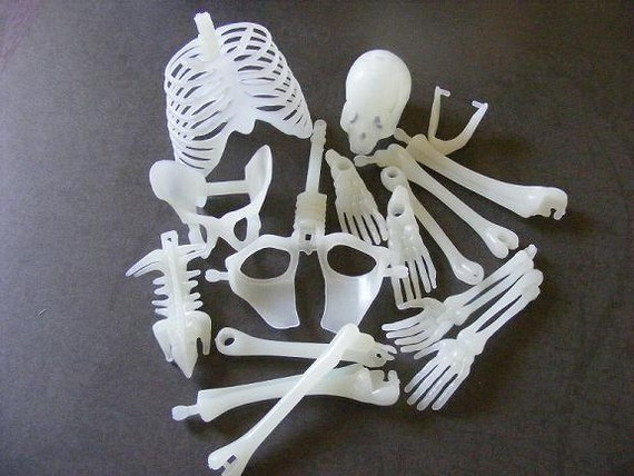 Box of Bones Glow in the Dark Skeleton Pieces