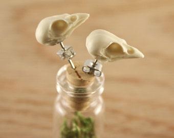 bird skull earrings - miniature sparrow skull studs - bone white
