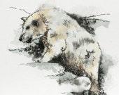 "Polar bear watercolor original 6"" x 7"" animal art pen and ink"