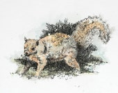 "Gray squirrel watercolor original 7"" x 5"" rodent  wildlife animal art pen and ink"