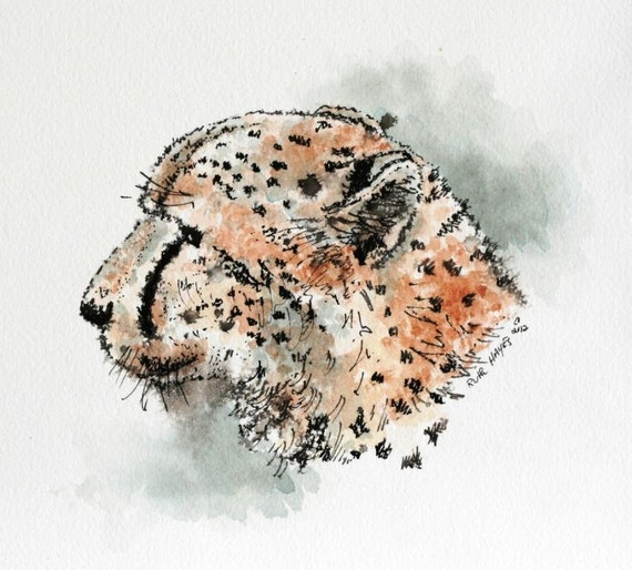 "Cheetah watercolor original 6"" x 6"" big cat art pen and ink"