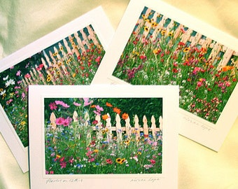Flowers on 12th Greeting Cards