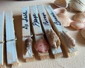 Set of 8 aqua washed Sea Shell  clothespins French Script