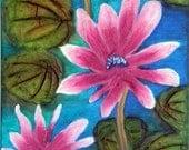 Pink Padma- The Lotus