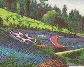 Elysian Park Flower Beds LOS ANGELES California Vintage Postcard