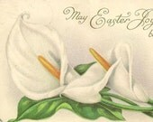 White Calla Lily Vintage Easter Postcard Stecher Litho 1919 - Serene and Peaceful Floral Postcard
