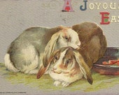Lop Eared Bunnies on Vintage John Winsch Easter Postcard Hudson Train Station NY Cancel 1912