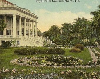 MIAMI Florida Vintage Postcard  Royal Palm Grounds Unused