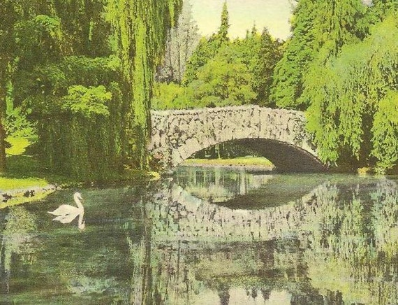 Beacon Hill Park Victoria British Columbia Vintage Postcard Pair
