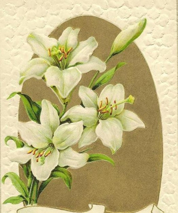 Pure White Easter Lily on Gold back 1912 Vintage Gottschalk Dreyfuss Easter Postcard
