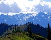 Hurricane Ridge Trail- 11x14 Photograph- Olympic National Park, Washington