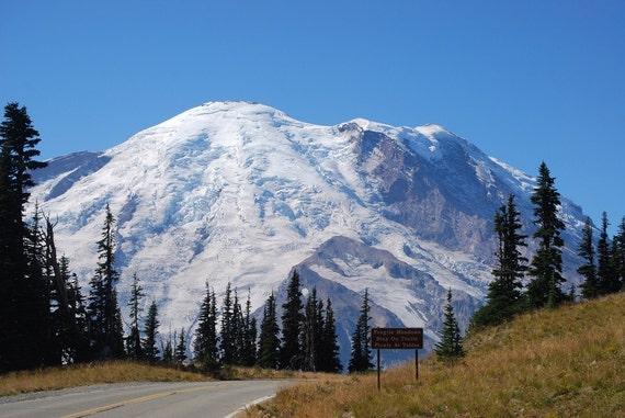 Mt. Rainier- 11x14 Photograph- On the road to Sunrise, fragile Meadows, Washington