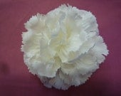 White Silk Carnation Bridal Fabric Flower Pin