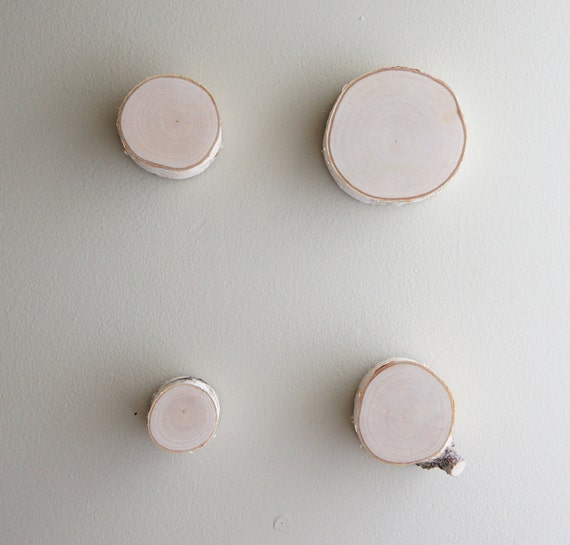 natural white birch wood slices wall decor - set of 4