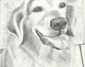 Custom Pencil Portrait of Pet, Person, Place From Your Photos.