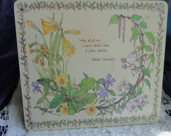 Vintage Hot Pad/Trivet with Summer Flowers by Taunton Vale