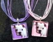 Best Friend.  Glass Tile Pendant with chain, ribbon/cord, key chain or Magnet