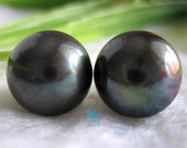 Black Pearl Earrings - Huge AAA 11.5-12.0mm Black Freshwater Pearl Stud Earrings - Free shipping