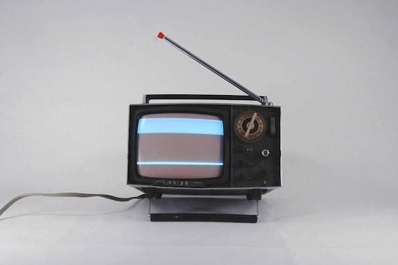 SONY Micro TV MODEL 5-303W