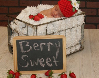 Crocheted Berrylicious Beanie Strawberry, Raspberry, Blackberry Newborn to Adult