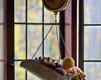 Antique Scale and Fruit Photograph 8x10 Color Print Home Decor