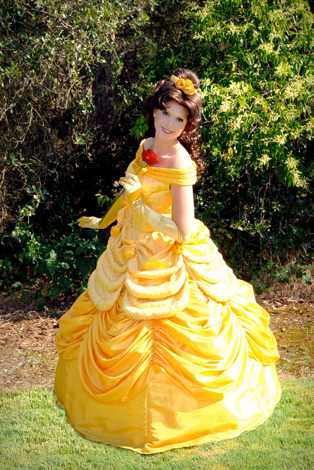 Belle Parade Version Adult Costume Beauty And The Beast Gown