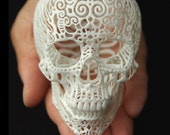 "Skull Sculpture ""Crania Anatomica Filigre"" (small) - shhark"