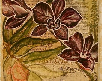Orchid Flower Collage