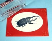 Stag Beetle Clear Polymer Rubber Stamp bug
