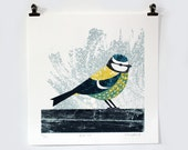 Blue Tit limited edition screen print
