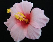6 PCS. 4.50 inches Pink Hawaiian Hibiscus flower Craft and Decoration